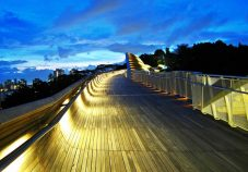 Henderson-Waves-Bridge-singapore